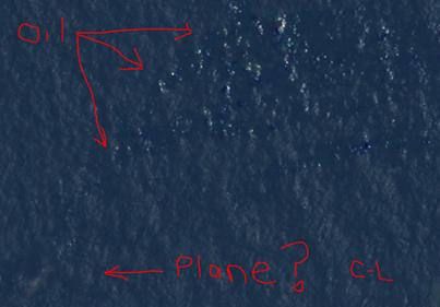 redwire courtney love find malaysia plane