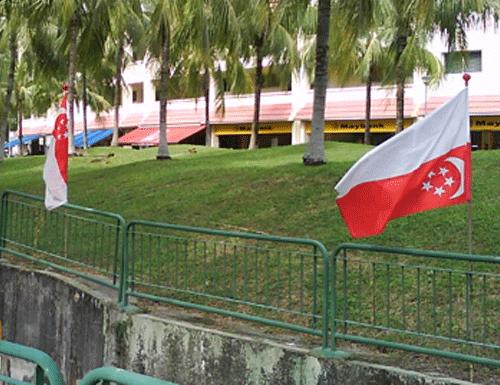 redwire-singapore-singapore-flag-4