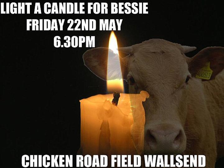 redwire-singapore-bessie-the-cow-3