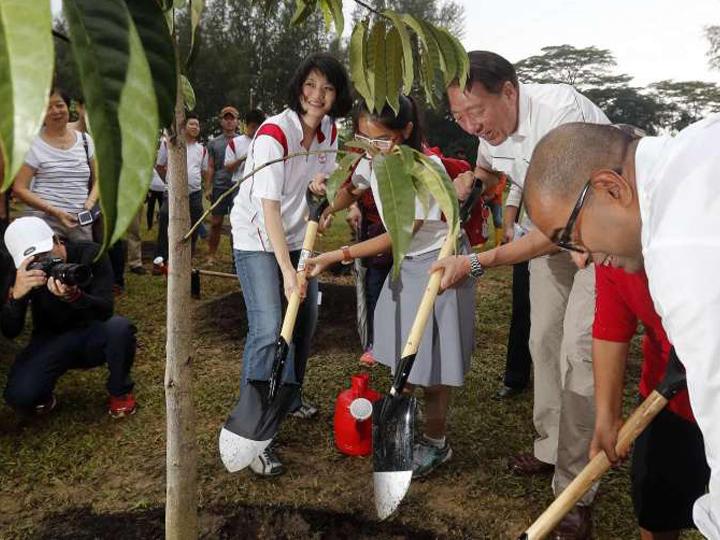 redwire-singapore-sun-xueling-soon-sher-rene-pap-general-election-2