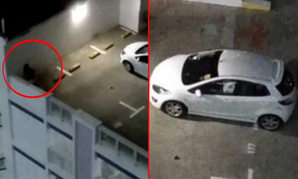 redwire-singapore-woman-sex-pee-public-carpark