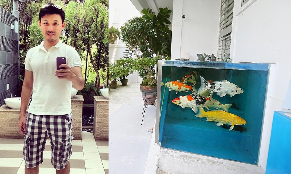 redwire-singapore-baey-tampines-fish-tank